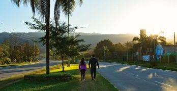 La Perón o avenida de las palmeras