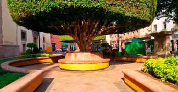 Importancia de la arquitectura biofílica en los espacios públicos de la ciudad de Querétaro / MÉXICO